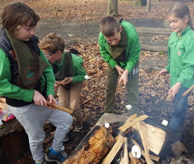 Welpen van scouting staan bij het kampvuur